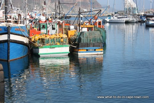 Cape Town Weather - Hout Bay Harbour