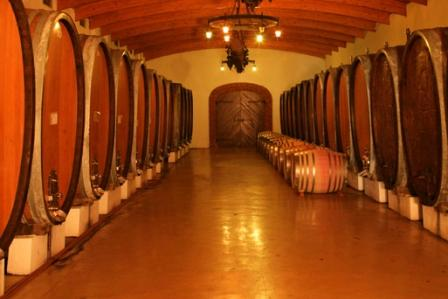 The cellar at Nederburg Wine Estate, Paarl