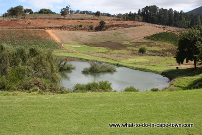 Fly Fishing Dam and Driving Range, Alluvia Boutique Winery, Stellenbosch Wine Route, Cape Town