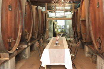 The old barrel room, Atydgedacht Wine Estate