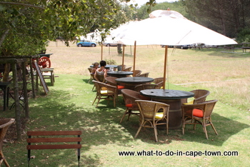 Restaurant, Altydgedacht Wine Estate, Durbanville Wine Route, Cape Town
