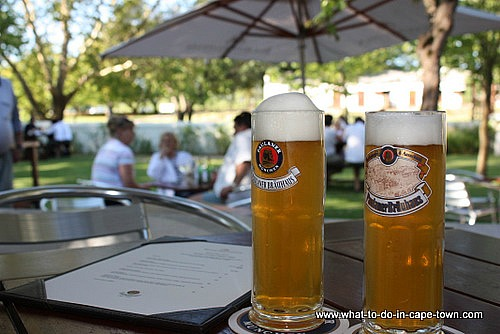 Paulaner Beer, Blaauwklippen Wine Estate, Stellenbosch Wine Route, Cape Town