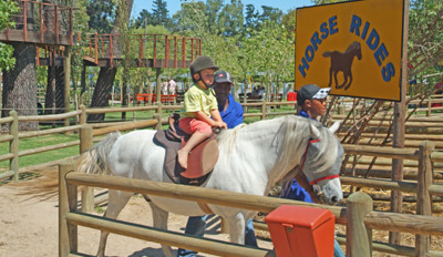 Horse Rides Bugz Family Playpark, Cape Town