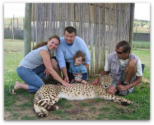 Cheetah Outreach, Somerset West
