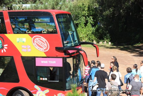 Wine Tour of City Sightseeing, Cape Town