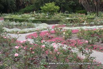 Rose Garden, Company Garden