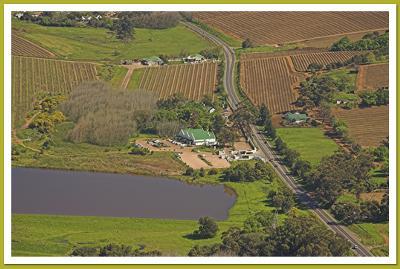 D'Aria Farm, Durbanville