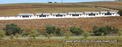 Cottages, D'Aria Vineyards, Durbanville Wine Route, Cape Town