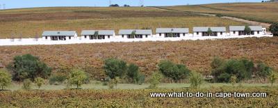 Cottages, D'Aria Vineyards, Durbanville Wine Route, Cape Town