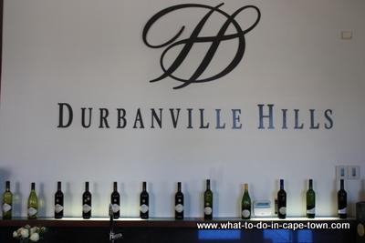 Tasting Centre, Durbanville Hills Cellar, Durbanville Wine Route, Cape Town