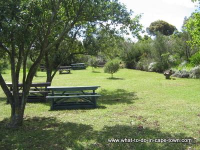 Durbanville Nature Reserve