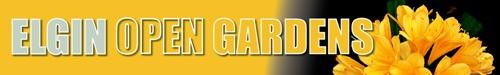 Elgin Open Gardens, Cape Town