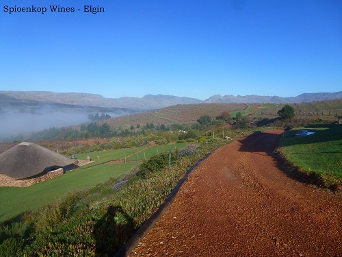 Spioenkop Wines, Elgin Wine Route