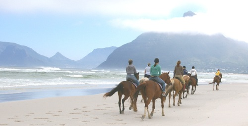 Imhoff Equestrian Centre, Cape Town Horse Riding Centres