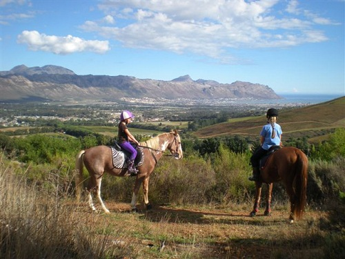 Journey's End, Cape Town Horse Riding Centres