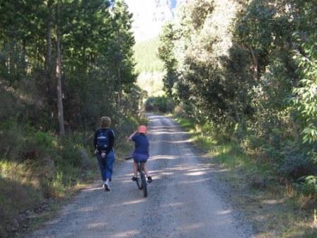 Circular Route Jonkershoek Nature Reserve