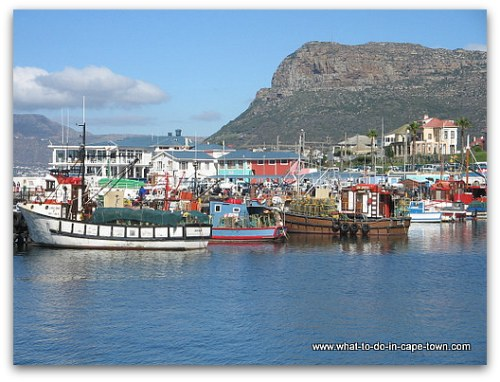 Kalk Bay Harbour, Cape Town