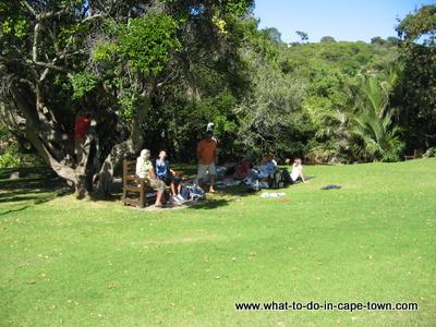 Picnic at Kirstenbosch National Botanical Garden
