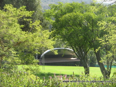 Kirstenbosch Summer Sunset Concerts, Activities in January in Cape Town