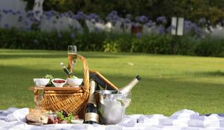 Laborie Wine Estate, Paarl Wine Route, Cape Winelands
