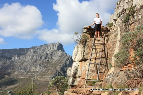 Lions Head Walk, Cape Town Nature, Cape Town Activities, Cape Town