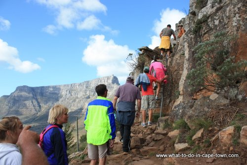 Lions Head Walk, Cape Town Nature, Cape Town Activities, Cape Town