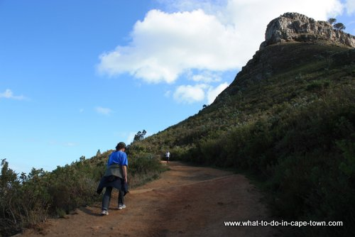 Cape Town Walks - Lion's Head