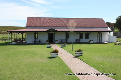 , Tasting Room, Middelvlei Wine Estate, Stellenbosch Wine Route, Cape Town