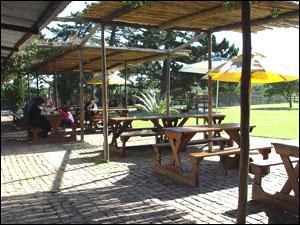 Patio, West Coast Ostrich Ranch, Cape Town