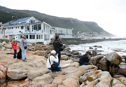 Cape Photographic Company, Peter Haarhoff, My Cape Town, Cape Town