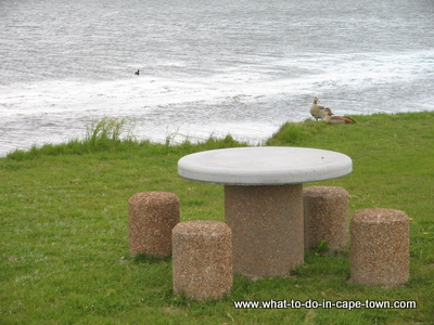 Picnic table at Rietvlei Nature Reserve