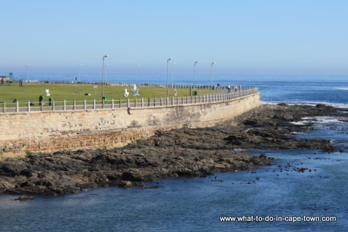 Sea Point promenade a favourite walk of Sarah Duff