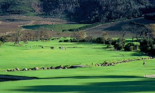 Steenberg Golf Course on Steenberg Vineyards