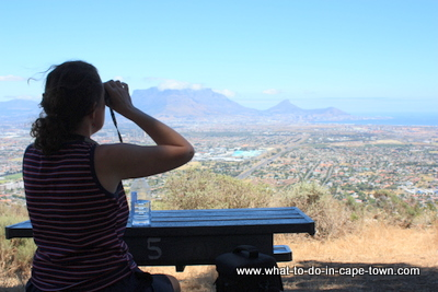 Cape Town Walks - Tygerberg Nature Reserve