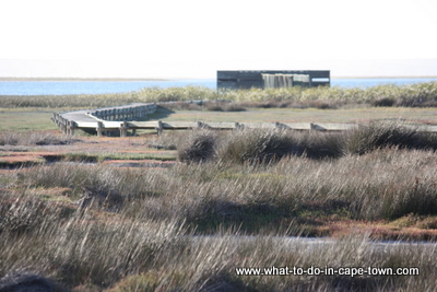 Geelbek Hide at West Coast National Park