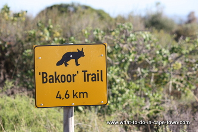 Bakoor Trail sign at West Coast National Park