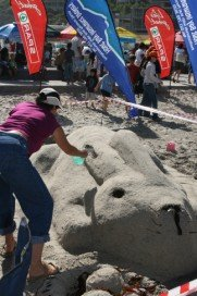 Sandcastle competition 2009