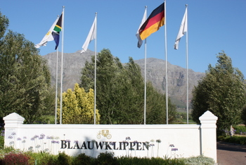 Blaauwklippen Wine Estate entrance