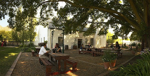 Wine Tasting, Blaauwklippen Wine Estate, Stellenbosch Wine Route, Cape Town