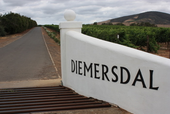 The entrance to Diemersdal Wine Estate