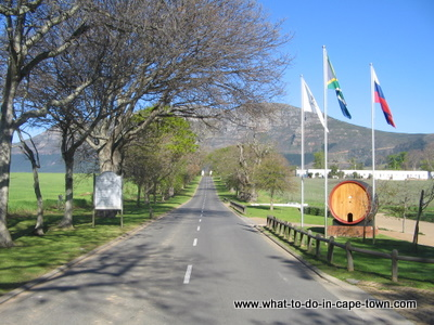 Groot Constantia Wine Estate, Cape Winelands, Cape Town Museums, Cape Town