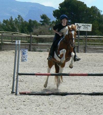 Imhoff Equestrian Centre, Cape Town Horse Riding Centres