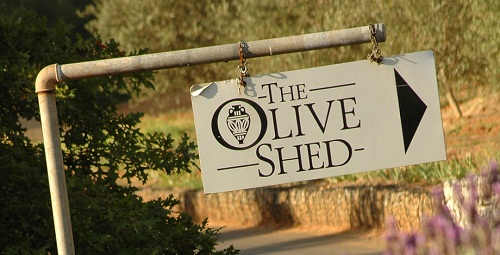 The Olive Shed at Tokara Wine Estate on the Stellenbosch Wine Route