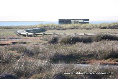 Cape Town Birding, Geelbek Hide at the West Coast National Park